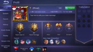 Level 30/hero 29/skin 16 tier legend