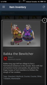 Babka The Bewitcher   ( courier )