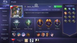 Level 30/hero 25/skin 13