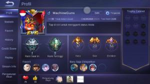 Level 30/hero 37/skin 23 elite yss