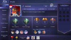 Level 30/hero 21/skin 8 tier epic