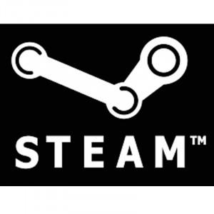Steam Wallet Code - IDR 25.000