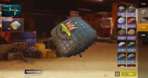 Medallion Parachute