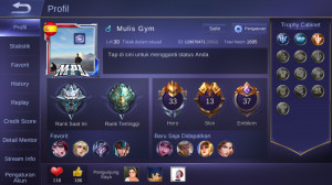 Hero 33 Skin 13|Grand Master V|Emblem GG|All Unbint