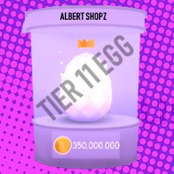 Tier 11 Pet simulator