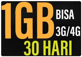 Three Data 1GB