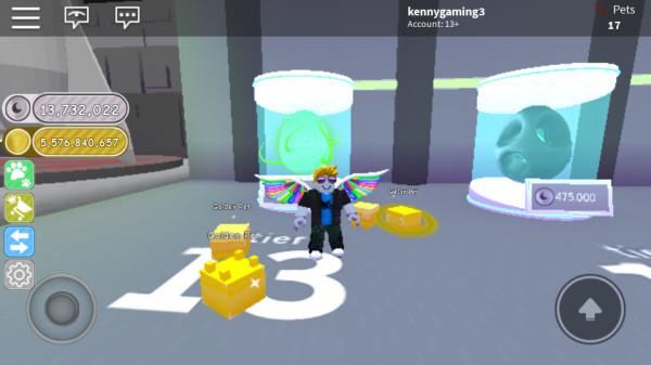Opening Random Egg Tier 13 Pet Simulator