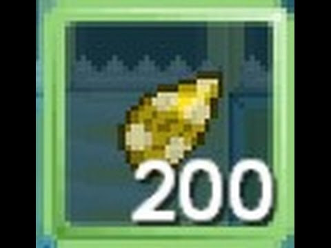 Seed chand per 200 biji