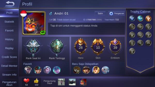 Level 30/hero 28/skin 10
