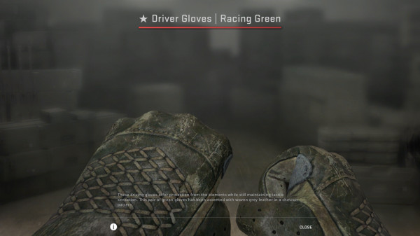 Driver Gloves | Racing Green