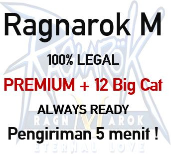 Premium + 12 Big Cat Coin