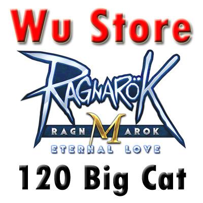 120 Big Cat Coin