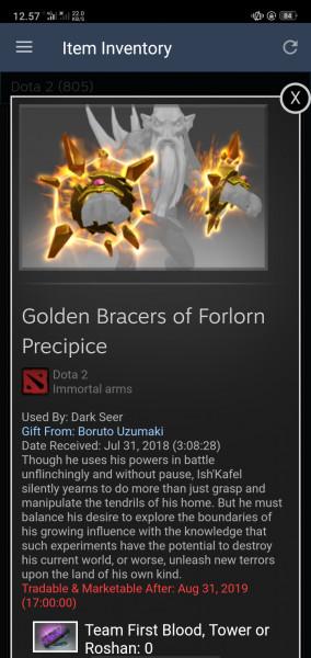 Golden Bracers of Forlorn Precipice( Immortal Dark