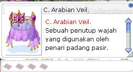 Costume Arabian Veil
