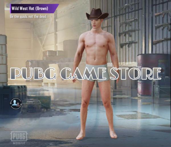 Wild West Hat (Brown)