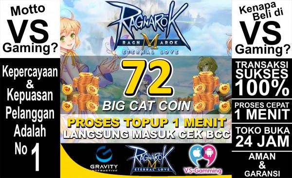 72 Big Cat Coin