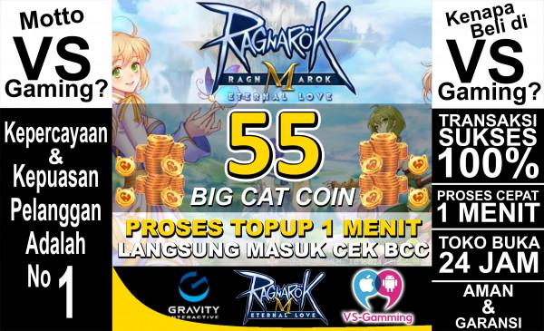 55 Big Cat Coin