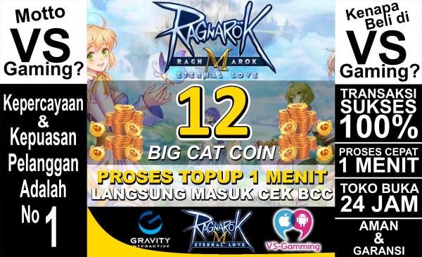12 Big Cat Coin