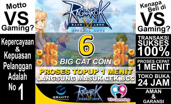 6 Big Cat Coin