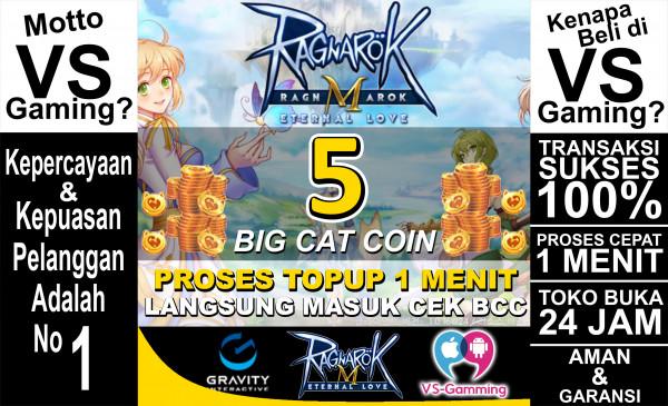 5 Big Cat Coin