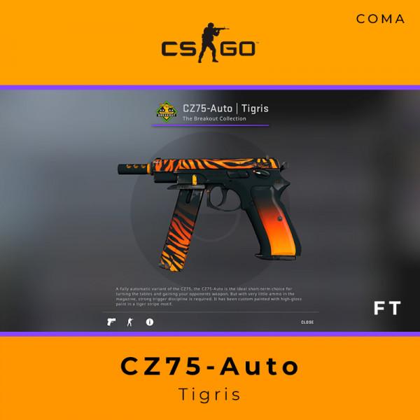CZ75-Auto | Tigris (Field-Tested)