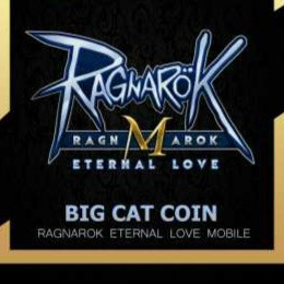 8 Big Cat Coin