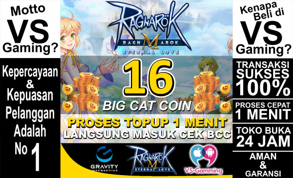 16 Big Cat Coin