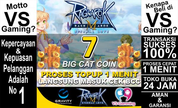 7 Big Cat Coin