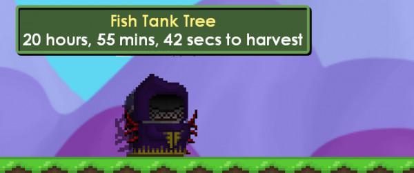 Fishtank seed