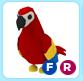 Parrot F / R - Adopt Me